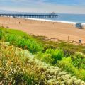 Manhattan Beach Pier, Enviroscape LA Landscaping Contractor