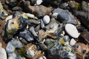 seaside rocks in different hues