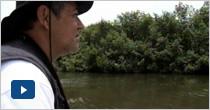 Expedición Antioquia: expedición estuarina, Golfo de Urabá