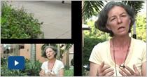 Semillas de vida. Gloria Jaramillo