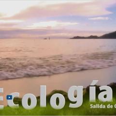 Salida Ecología Capurganá. Biología Universidad EAFIT