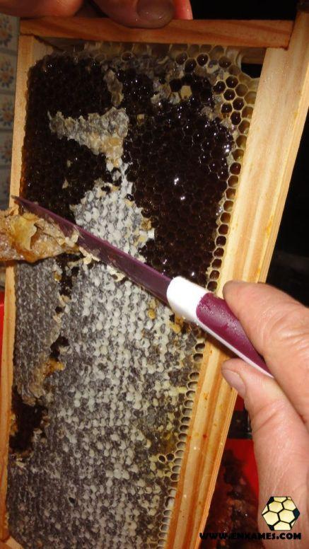 Quadro com mel