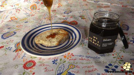 Torrada com pão caseiro e mel