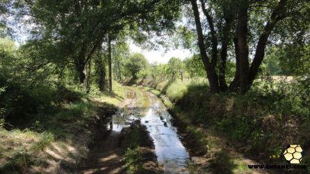 caminho-agua