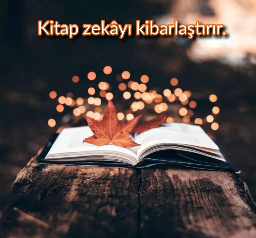 Kitap zekayı kibarlaştırır - Resimli Düşündürücü Sözler - Anlamlı Ve Etkileyici Derin Sözler, resimli-sozler, guzel-sozler, anlamli-sozler