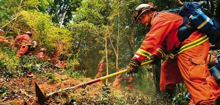 Ο Δήμος Φιλοθέης-Ψυχικού προσλαμβάνει οκτώ άτομα για την κάλυψη αναγκών πυροπροστασίας