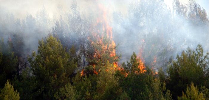 Συνεχίζεται η προειδοποίηση για υψηλό κίνδυνο πυρκαγιάς