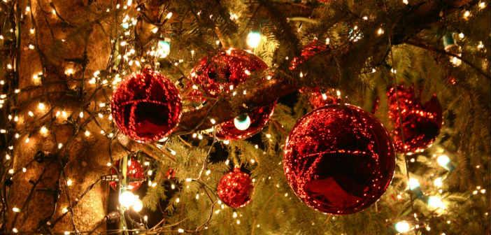 Φωταγωγείται το χριστουγεννιάτικο δένδρο του Δήμου Πεντέλης