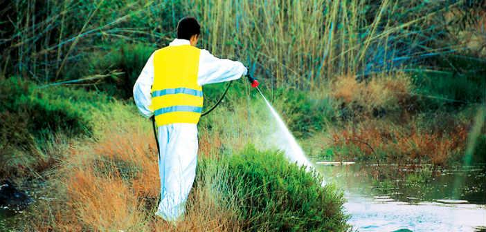 Πραγματοποιήθηκε η εκδήλωση «Διαχείριση κουνουπιών στον Δήμο Κηφισιάς»