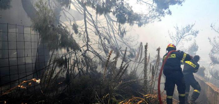 Σε επιφυλακή η Περιφέρεια Αττικής για τον κίνδυνο πυρκαγιών