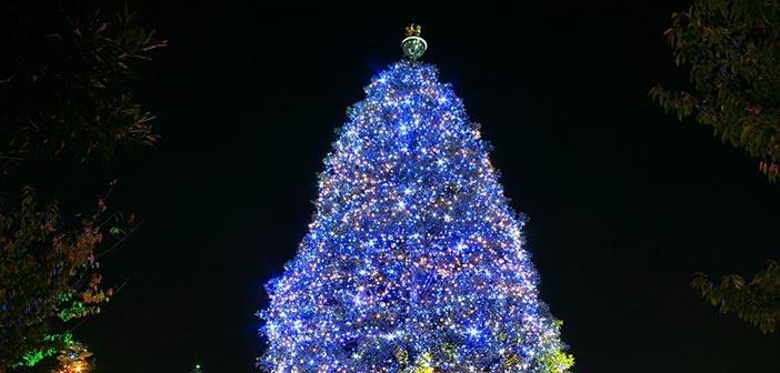 «Ανάβουμε» το χριστουγεννιάτικο δένδρο του Δήμου Φιλοθέης – Ψυχικού