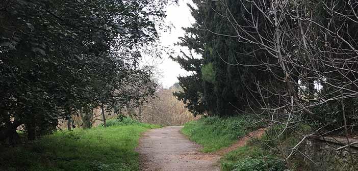 Δήμος Μπροστά+: Πλήρης εγκατάλειψη του ρέματος της Πύρνας