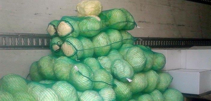 Διανομή τροφίμων στα Βριλήσσια από το Πρόγραμμα ΤΕΒΑ