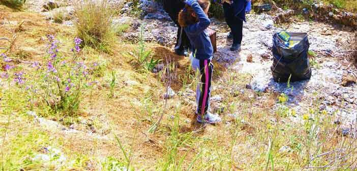 Καθαρισμός στο δάσος Φασίδερη και στο Ρέμα της Χελιδονούς την Κυριακή 5/7 στον Δήμο Κηφισιάς