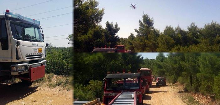 Συνδρομή του ΣΠΑΠ στην κατάσβεση πυρκαγιάς στο Κρυονέρι