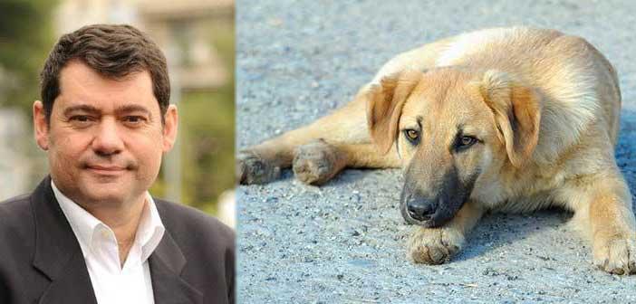 Χαιρετίζει τη δημιουργία Καταφυγίου Αδέσποτων Ζώων από τον ΣΒΑΠ ο Τ. Μαυρίδης