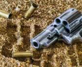 ΗΠΑ: Δίχρονος πυροβόλησε και σκότωσε τον τετράχρονο αδερφό του
