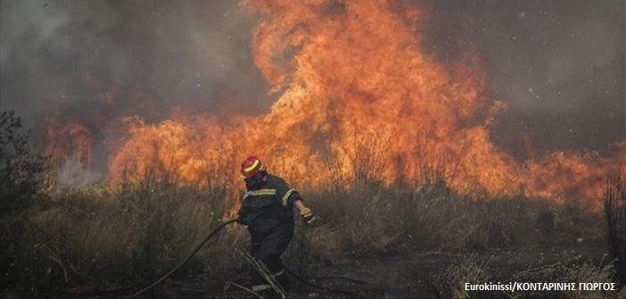 Υπό έλεγχο οι πυρκαγιές σε Θεσσαλονίκη και Ηλεία