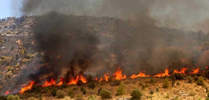 Κρήτη: Έβαλε να ψήσει «αντικριστό» και κινδύνεψαν από τη φωτιά τρία χωριά