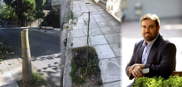 Γ. Παπαδημητρίου για διοίκηση Μπάμπαλου: Κόβει μεγάλα δένδρα και φυτεύει δενδρύλλια των 2 ευρώ