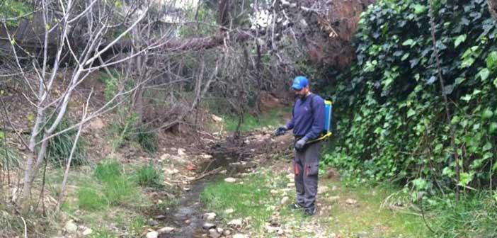 7ος κύκλος βιολογικών ψεκασμών κατά των κουνουπιών στα ρέματα της Βόρειας Αθήνας