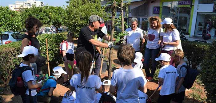 Τρεις υψηλόκορμες ακακίες φυτεύτηκαν από «Τα παιδία παίζει» στο Γαλάτσι