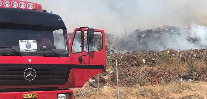 Σε ετοιμότητα αύριο οι υπηρεσίες της Περιφέρειας Αττικής λόγω πρόβλεψης πολύ υψηλού κινδύνου πυρκαγιάς