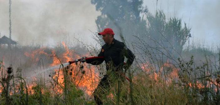 Άμεση κινητοποίηση Περιφέρειας Αττικής για τη φωτιά στην Αρίωνος, μεταξύ Ραφήνας και Αρτέμιδος