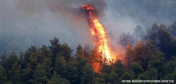 Πολύ υψηλός ο κίνδυνος φωτιάς τη Δευτέρα