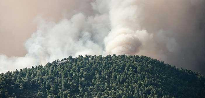 Σε ύφεση η πυρκαγιά στην Εύβοια – «Χάθηκαν» 24.000 στρέμματα δάσους