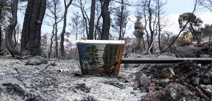Φωτιά στην Εύβοια: Γκαζάκια και μπιτόνια έξω από το χωριό Μακρυμάλλη «δείχνουν» εμπρησμό