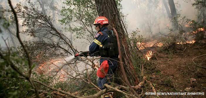 Πυροσβεστική: 38 δασικές πυρκαγιές εκδηλώθηκαν σε μία ημέρα