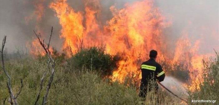 Φωτιά στις Ερυθρές Αττικής: Καίει δάσος στη βόρεια πλευρά του Κιθαιρώνα