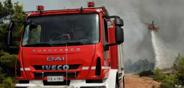Μέσα από αυλές σπιτιών πέρασε η φωτιά στην Αρτέμιδα
