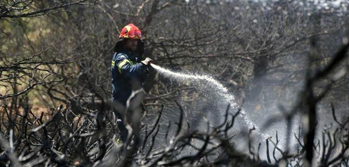 Υπό μερικό έλεγχο η πυρκαγιά στις Ερυθρές Αττικής
