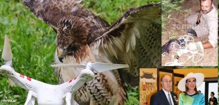 «Αντιαεροπορικό» γεράκι κατέρριψε drone στο Ψυχικό