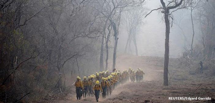 Βολιβία: Τουλάχιστον 2,3 εκατ. άγρια ζώα νεκρά στις πυρκαγιές
