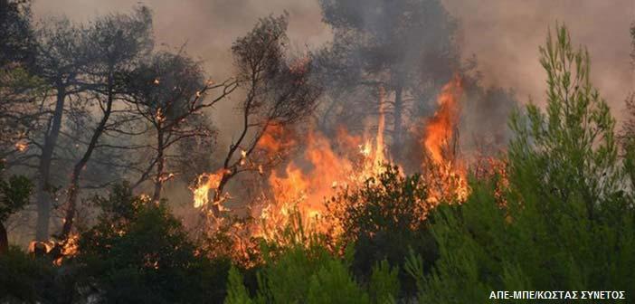 Σε ύφεση οι πυρκαγιές σε Ζάκυνθο, Λουτράκι, Κέρκυρα