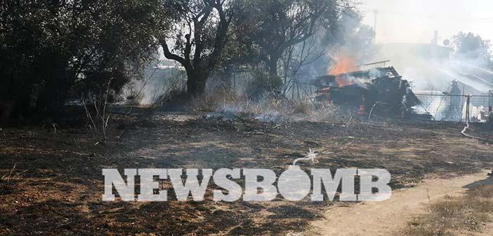 Πυρκαγιά σε φυτώριο στην Κηφισιά