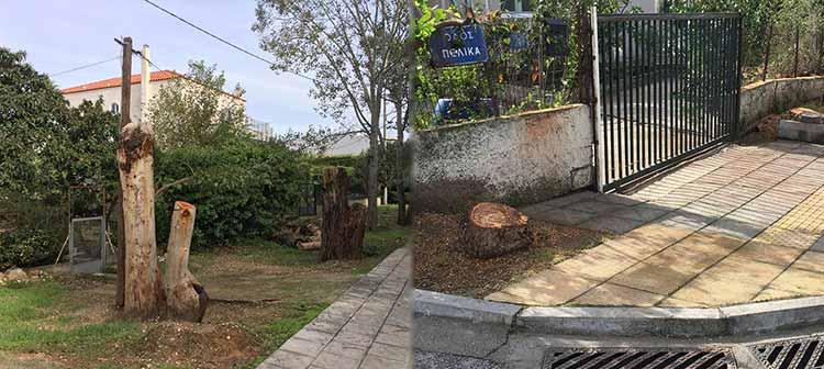 Ενίσχυση του πρασίνου στο Ψαλίδι Αμαρουσίου ζητεί ο τοπικός σύλλογος