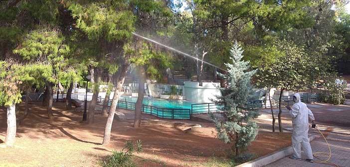 Βιολογική καταπολέμηση της πιτυοκάμπης από τον Δήμο Παπάγου – Χολαργού
