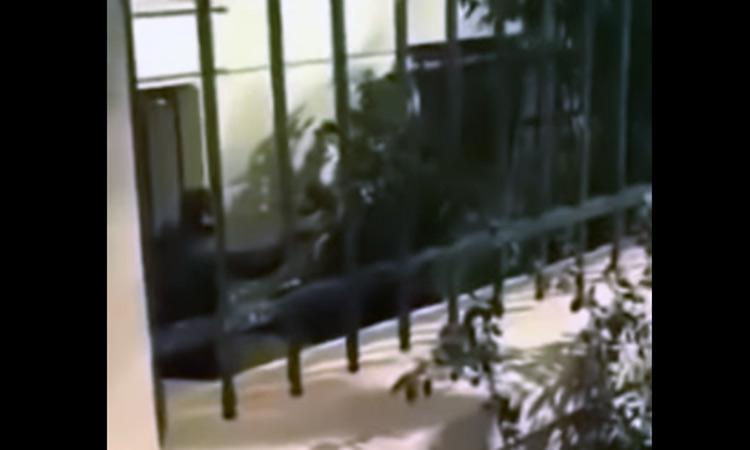 Επίθεση σε αστυνομικό στην ΑΣΟΕΕ – Τράβηξε το όπλο του (βίντεο)