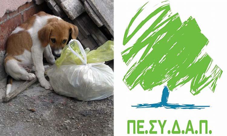 Τη στήριξη της Πολιτείας για την προστασία των αδέσποτων ζώων ζητεί ο ΠΕΣΥΔΑΠ