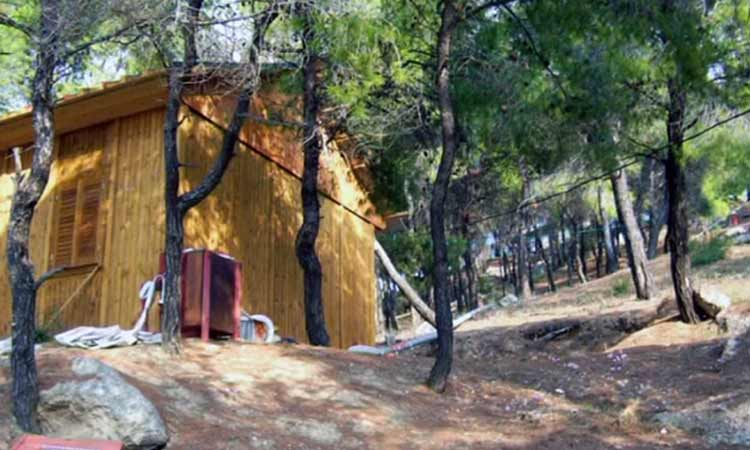 Ενότητα για τη Ν. Ιωνία: Κατασκήνωση στο Αλεποχώρι – Άλλη μια χρονιά κλειστή;
