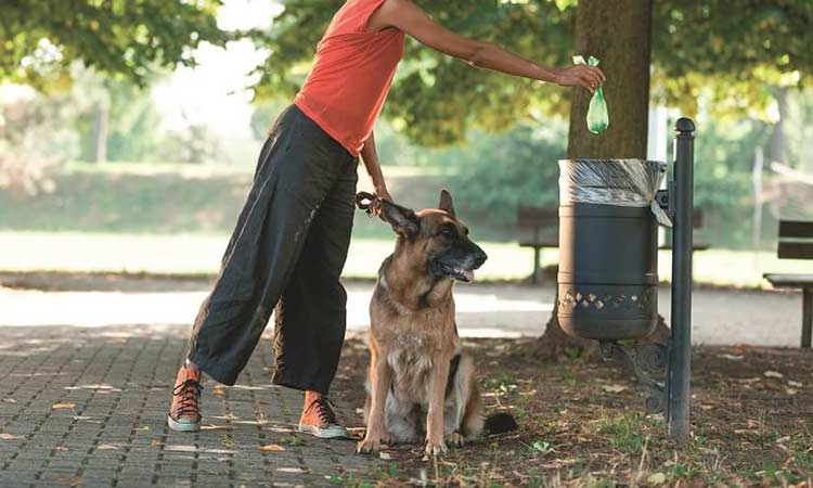 Να μαζεύουν τα περιττώματα των σκύλων τους ζητεί από τους δημότες ο Δήμος Αγίας Παρασκευής