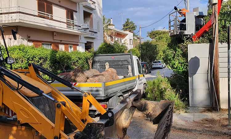 Προβλήματα από τον ισχυρό άνεμο στο Χαλάνδρι – Στο… πόδι η υπηρεσία Πρασίνου