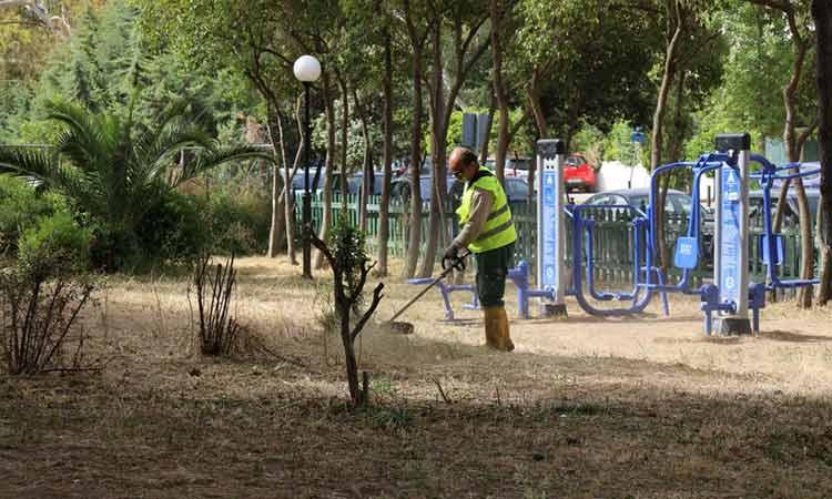 Εργασίες καθαριότητας και συντήρησης πρασίνου στην περιοχή της Αγίας Φιλοθέης στο Μαρούσι