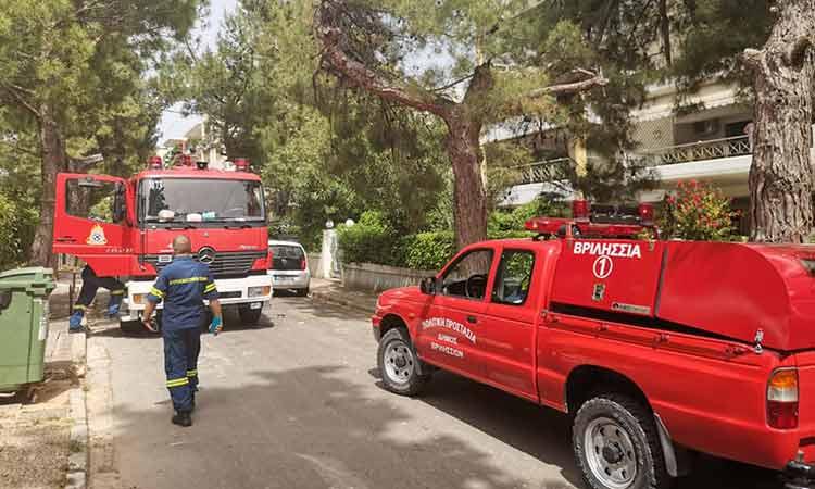 Νέα φωτιά σε πεύκο ξέσπασε στα Βριλήσσια