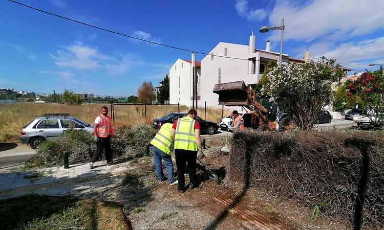 Εργασίες καθαριότητας και συντήρησης πρασίνου στην περιοχή του Σωρού στο Μαρούσι