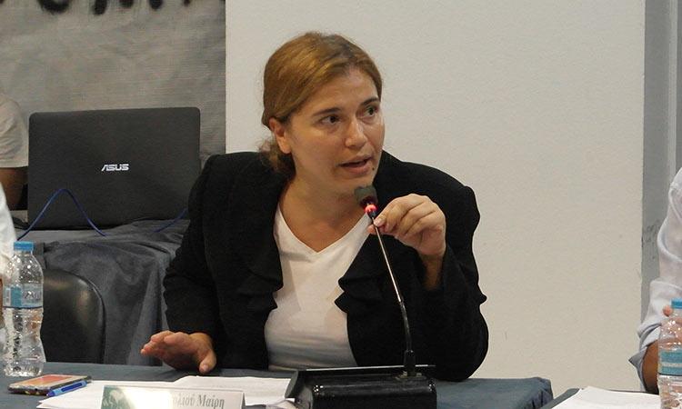 Μ. Διακολιού: Eργασίες τοποθέτησης πρόσθετων στύλων με ηλεκτροφόρα καλώδια πραγματοποιήθηκαν στο Δάσος Συγγρού